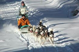 Dogsledding and snowshoeing experience a short drive from Ottawa and Gatineau