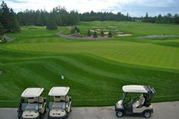 Picture of Canadian Golf & Country Club – Golf for Two - 9 holes