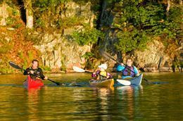 Picture of 1000 Islands Kayaking – Half Day Guided Tour