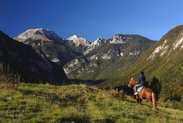 Picture of Rocky Mountain Helicopter and Horseback Riding Tour