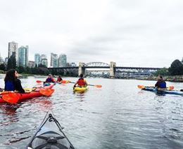 Picture of Light the Night Kayak Tour - Single Kayak