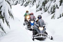Picture of Fresh Tracks Snowmobile Tour - BEGINNER - DRIVER