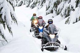 Picture of Fresh Tracks Snowmobile Tour - BEGINNER - DRIVER + CHILD PASSENGER