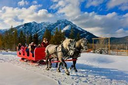Picture of Banff Sleigh Ride - Public