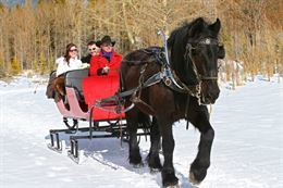 Picture of Private Banff Sleigh Ride for 2