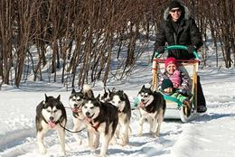 Dogsledding and snowshoeing overnight stay a short drive from Ottawa and Gatineau