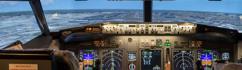 Picture for category Flight Simulator