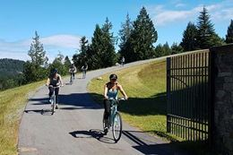 Vancouver Island Cycling Tour from Vancouver with Lunch and Wine Tasting