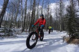Fat Bike Frozen Waterfall Tour in Kananaskis