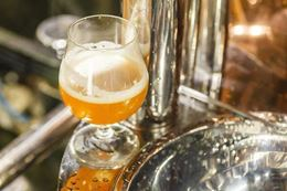 Guided tour of Victoria craft beer breweries