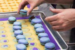 Calgary Macaron Baking Class, Breakaway Experiences