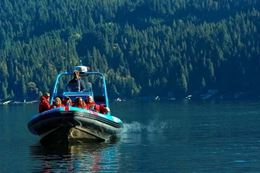 Discover Vancouver sites on the Granite Falls boat tour from Granville Island
