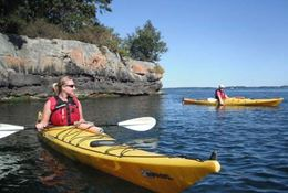 Picture of 1000 Islands Kayaking – Self-Guided Tour - FULL DAY  - SINGLE KAYAK