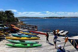 Picture of Halifax Sea Kayaking Tour