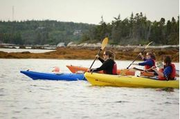 Picture of Halifax Sea Kayaking Tour