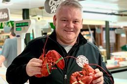 Picture of Maritime Lobster Supper at Toronto's St. Lawrence Market