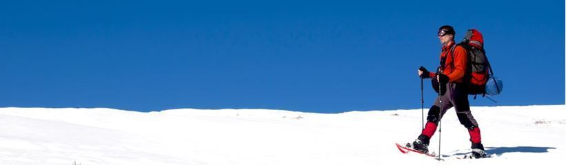 Picture for category Snowshoe Tours