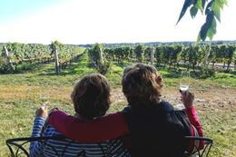 Picture of Niagara Cold Climate Wine Tour from Toronto
