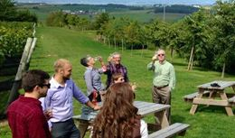 Guided tour of Annapolis Valley wineries from Wolfville and Halifax