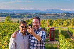 A Guided tour of Annapolis Valley Nova Scotia wineries from Halifax and Wolfville