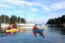 Picture of Gulf Islands Kayak Tour - 2 hours