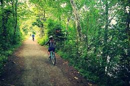 Picture of Vancouver Island Cycling Tour from Vancouver with Lunch and Wine Tasting