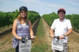 Picture of Wine Tasting and Segway Tour at Henry of Pelham Winery