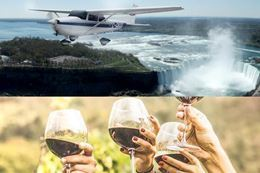 Picture of Niagara Wineries Tour and Scenic Flight from Toronto - for 6
