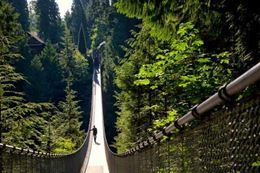 Picture of North Vancouver and Capilano Bridge Private Sightseeing Tour
