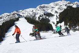 Picture of Learn to Ski or Snowboard, Banff