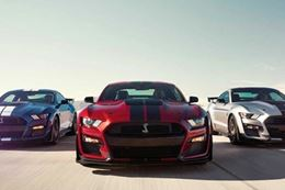 Slide behind the wheel of a high-performance Ford Mustang or Dodge Charge and race