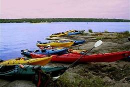 Picture of 1000 Islands Kayaking – Self-Guided Tour - HALF DAY - TANDEM KAYAK