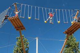 Discover the excitement of zip lines and suspended aerial course on the Vancouver Aerial Adventure Course