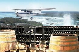 Niagara Falls Wine, Dine and Fly Sightseeing and Winery Tour