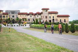 Niagara-on-the-Lake Wine Tour by E-bike
