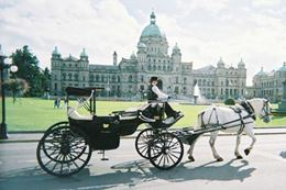 Victoria BC Horse Drawn Carriage Tour