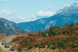 Add Off Road Tour and Ziplining to list of fun things to do in Whistler