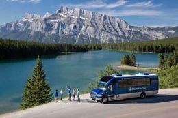 Summer Banff sightseeing tour wildlife