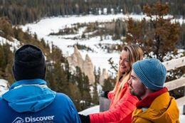 Banff winter sightseeing tour wildlife