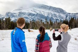 fun things to do in Banff in winter