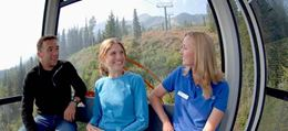 Banff sightseeing guided tour, Grizzly Bear Refuge
