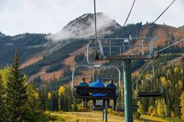 Banff Grizzly Bear tour with chairlift to mountain top