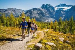 Banff hiking tour with guide