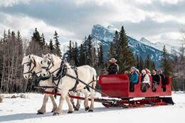 Banff Sleigh Ride Banff National Park