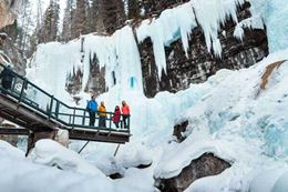 Johnston Canyon Icewalk Banff tour