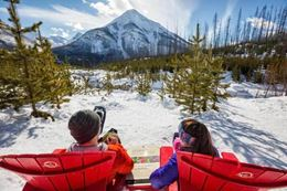 Snowshoeing Banff in winter tour, Marble Canyon
