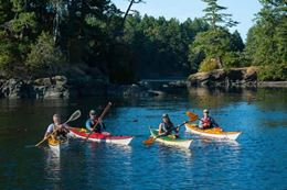 Pacifica Paddlesports Guided Kayak Tour Brentwood Bay Victoria BC