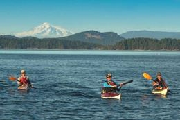 Picture of Gulf Islands Kayak Tour -  3 Hours