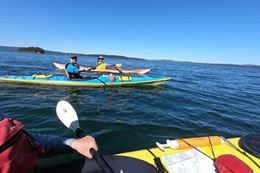 Guided Kayaking Tour  of Gulf Islands, Swartz Bay, Vancouver Island