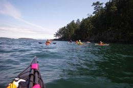 Brentwood Bay Kayak Tour and Pub Lunch